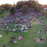 Stockton Concerts in the Park